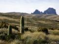 Mt.Kenya...3500 mnm a úchvatná flóra