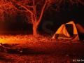 Nejhezčí možná noc v Africe, stan uprostřed buše a zvuky savany....
