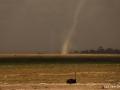 Apokalyptický výjev...písečná tornáda a úrodná země měnící se v pustinu..